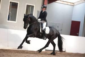 merries 2e - Ytsje W van Dedgum (Alke x Olof) met Harmina Holwerda
